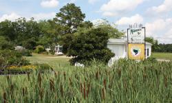 McKenzie Farms and Nursery