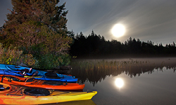 Moonlit Paddles