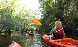 Paddling Excursion - Persimmon's Bluff to Snow's Lake