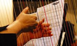 Florence Symphony Orchestra Assistance