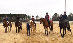 Tally Ho Equestrian Center