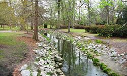 Timrod Park
