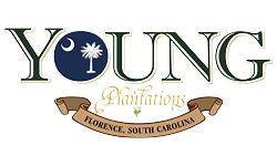Young Plantations